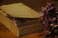 #StillLife recipes #ThroughHerLens (7 Blue Nights) Tags: stilllife flickrfriday old flower book rx10 throughherlens