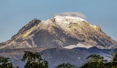 Nevado del Quindío (Frank Shufelt) Tags: nevadodelquindío 20190126 january2019 2650 parquenacionalnaturallosnevados