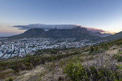 _RJS4847 (rjsnyc2) Tags: 2019 africa capetown d850 landscape nikon outdoors photography remoteyear richardsilver richardsilverphoto southafrica travel travelphotographer mountain nature