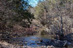 Long Creek (Gary Allman) Tags: fujifilmxe3 backpacking gsa longcreek backpackingjanuary262019 herculesgladeswilderness
