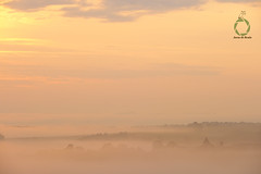 A lone church tower sticks above the mist covering the bavariahn landscape in the early morning sunrise. shared with pixbuf (Jorne de Bruin) Tags: sunsrise bavaria kohlberg germany forest trees town old historic dawn belltower tower mist fog obscured mystical dusk bayern europe distance color sky beautiful church churchtower