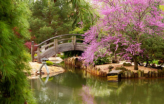 SPRING AT THE GARDENS