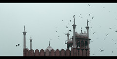 jama-masjid-minar (pankajnegi436) Tags: cinematography cinematic composition cinemaframe cinematiclight colors filmstill frame filmmaking focus film people photography phttographyeverday streetphotography sky