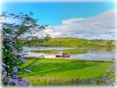 Wrecked on the river, Near Teelin, Co. Donegal. (willieguildea) Tags: boat fishingboat river coast coastal landscape tree sky cloud teelin donegal ireland eire ulster shadows