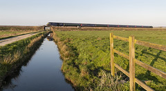 Spring Light on the Somerset Levels (powern56) Tags: somerset somersetlevels stathe langport class43 hst 43156 gwr greatwesternrailway 1c88 railway passengertrain railstathe