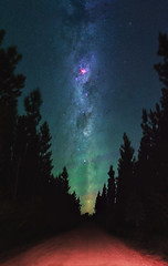 Summer Milky Way - Jarrahdale Pines, Western Australia (inefekt69) Tags: milky way jarrahdale pines pine trees forest tree skytracker ioptron cosmology southern hemisphere cosmos western australia dslr long exposure rural night photography nikon stars astronomy space galaxy astrophotography outdoor 50mm d5500 panorama stitched mosaic msice hoya red intensifier didymium filter carina nebula eta carinae sky summer coal sack dirt road track