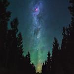 Summer Milky Way - Jarrahdale Pines, Western Australia thumbnail