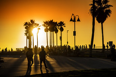 "Venice Beach Action At Sunset, LA (El-Branden Brazil) Tags: ""los angeles"" la ""venice beach"" ""santa monica"" california usa ""the united states"" america beach sea sunset"