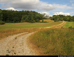 20180803_06 Gravel road among fields | The trail Bohusleden, section 16 - Kaserna to Harska | Bohuslän, Sweden (ratexla) Tags: ratexlasbohusledenhike bohusleden bohusledenetapp16 3aug2018 2018 canonpowershotsx50hs bohuslän sweden sverige scandinavia scandinavian europe earth tellus travel travelling traveling journey epic photophotospicturepicturesimageimagesfotofotonbildbilder wanderlust vacation holiday semester trip backpacking resaresor europaeuropean sommar summer ontheroad nordiccountries norden skandinavien hiking hike beautiful vandra vandring grass field fields gräs vandringsled vandringsleder landscape scenery scenic trail trails road unpaved grusväg mittsträng väg vägar landsväg ratexla almostanything unlimitedphotos favorite