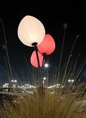 Tre (Aellevì) Tags: lampioni luci palloni notte cespuglio lancio sbuffo