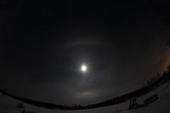 Moon halo_2019_01_18_0012 (FarmerJohnn) Tags: kuu kuutamo moonlight reflection heijastus haloilmiö halo moonhalo night yö talvi winter january tammikuu hanki snowfield lumi miljoonatimanttiahangella snow samyang8mm35umcfisheyecsii canoneos7d canon 7d suomi finland valkola anttospohja juhanianttonen