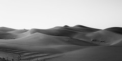 No Man's Land (KC Mike Day) Tags: desert arizona road roadside sand southwest roadtrip white black