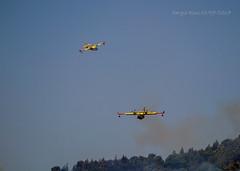 3417 - Canadair CL-415 (Sergio Dini) Tags: sergiodini lumixgx1 lumix gx1 canadair cl415 antincendio incendio anfibio aereo vikingair415superscooper canadaircl415 superscooper bombardier415superscooper