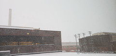 January 28, 2019 - Snow coming down in north Denver. (ThorntonWeather.com)