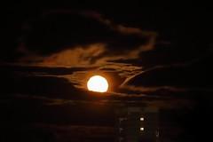 Reluctant Full Moon,Aberdeen_Feb 19_772 (Alan Longmuir.) Tags: grampian aberdeen misc sky moon reluctantfullmoon night
