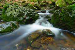 Waterfall. (gillesfrancotte) Tags: 2019 ardennes cantonsdelest d800 eastbelgium fagnes hoëgne jalhay nikon outdoor statte cascade creek eau fall fens hiver landscape longexposure nature river stream torrent water waterfall waterscape winter
