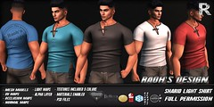 Sharid Light Shirt (Raoh's Design) Tags: secondlife aesthetic niramyth signature gianni geralt slink belleza jake tmp mesh virtualworld
