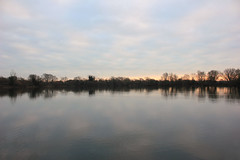 Vinnetrow (ekaterina alexander) Tags: vinnetrow lake chichester lakes clouds evening light cloud reflections tree trees leafless winter landscape england sussex ekaterina alexander nature photography pictures