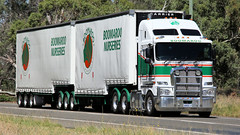 Double B's & None (1/3) (Jungle Jack Movements (ferroequinologist)) Tags: newell highway nsw new south wales melbourne sydney brisbane hp horsepower big rig haul haulage freight cabover trucker drive transport carry delivery lorry hgv wagon road nose semi trailer deliver cargo interstate articulated vehicle load freighter ship move motor engine power teamster truck tractor prime mover diesel injected driver cab cabin rumble wheel exhaust double b grey dove parkes boomaroo nurseries k200 western star land