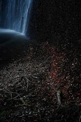 20190320a73_6313 (Gansan00) Tags: lce7m3 α7ⅲ sony japan 大分県 oita 日本 beepu 別府 landscape snaps ブラリ旅 03月 fe24105f4