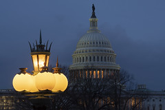 US Capitol Dome from the Library of Congress (jtgfoto) Tags: approved uscapitol dome architecture architectural architecturalphotography lamp bluehour washington washingtondc sonyalpha libraryofcongress