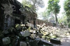 Angkor_Ta Prohm_2014_22