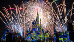 Unlocking Your Own Magic​ (RT Images) Tags: disney disneyworld magickingdom fireworks happilyeverafter