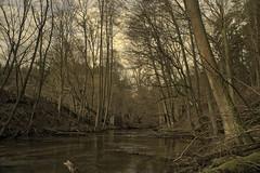 Lyna river fallen bridge (grzegorzmarek) Tags: rokkor 28mm 28 28mm28 minolta md ilce7 lyna river rus olsztyn