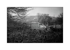 Le Morvan (Punkrocker*) Tags: nikon s2 rf rangefinder nikkor 50mm 5014 sc film kodak trix pushed 800 nb bwfp monochrome campagne landscape village morgan bourgogne france