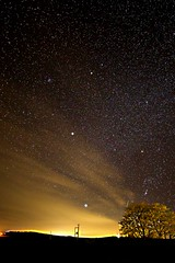 Starry Aberdeenshire Sky (matthewblackwood10) Tags: stars star starry sky night space astro glow shine ambient outside winter cold bare tree field skies nighttime dark aberdeen aberdeenshire scotland uk nature science peaceful shadow country countryside coast long exposure