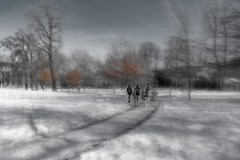 Winter melancholy .. (Honza 007) Tags: winter time melancholy park black white light blur people trees sky snow way alley