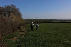 brill walk-190401-25.jpg (Phil Mercer-Kelly) Tags: sunshine spring radiooxford bbc counyryside blossom philmercer getactive brill sheep buckinghamshire europe england uk oxfordshire views bucks health windmill walker oakley walk