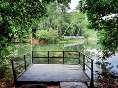 Forest Reserve Lake Jalan Merbah 10/1, Kota Damansara, 47810 Petaling Jaya, Selangor https://maps.app.goo.gl/AJnjC  https://foursquare.com/soonlung81  https://maps.app.goo.gl/CPWsi  Transportation service: 交通服務: Servicio de transporte: Service de transpor (soonlung81) Tags: naturel reizen semester 여행 viaggio naturale malaysia vakantie holiday asian 馬來西亞 การเดินทาง طبيعة природа natuurlijk 휴일 trip natuur fiesta vacances سفر 自然 ธรรมชาติ 亞洲 путешествие natural nature alam traveling 度假 旅行 大自然 voyage عطلة праздник vacanza natürlich resa วันหยุด asia ホリデー 자연 viaje reise urlaub travel