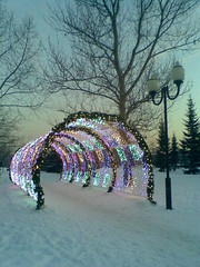 a tunnel of light (VERUSHKA4) Tags: tunnel light lighting view vue ville city tree cityscape sky ciel hiver season winter wintertime farole lamp streetlamp blue nokia shot europe russia moscow neige neve outdoor street snow perspective colourful beautiful arch decoration metallicobject irondetail firtree