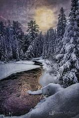 Last Call (Knarr Gallery) Tags: snow trees creek sun sunset sunrise dusk dawn forest bush crick river stream knarrgallerycom beauty winter ice nikon d300 muskoka huntsville ontario 18200mmf3556gvrii knarrgallery knarrphotography darylknarr