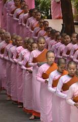 Sagaing Monastary, Myanmar (Neal J.Wilson) Tags: monk nuns buddhism religion burma myanmar travel travelling world pink monestry monastery monastary que people