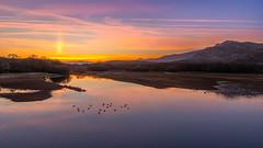 Después de esconderse el Sol (Victor Aparicio Saez) Tags: agua atardecer embalsedesantillana fotoconamparohervella horadorada lago laguna montañasnevadas naturaleza nubes paisaje pantano reflejos manzanareselreal madrid españa es
