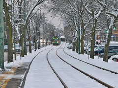 Snow Day on the Green Line (hansntareen) Tags: snow greenline mbta tracks rail lightrail trees