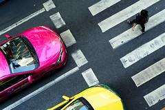 Pink and Yellow (TigerPal) Tags: bangkok thailand thai southeastasia street streets vacation travel silom taxi pedestrian