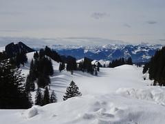 An der Priener Hütte (bookhouse boy) Tags: winter berge mountains alpen alps chiemgaueralpen sachrang prienerhütte 2019 9märz2019 schnee snow