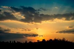 Sunset, Florence (Miscolo) Tags: horizon sunset sunbeams eveninglight italy evening holiday dusk sun summer tuscany trees xt1 beam twilight latesummer sky sunbeam fujifilm clouds september florence