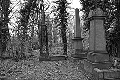 General Cemetery  Monochrome (brianarchie65) Tags: generalcemetery cemeteries hull trees bushes ivy flowers geotagged brianarchie65 yorkshire graves grave headstones brokenheadstones eastyorkshire springbankwest canoneos600d unlimitedphotos ngc inexplore blackandwhite blackandwhitephotos blackandwhitephoto blackandwhitephotography blackwhite123 blackwhiterealms flickrunofficial flickr flickruk flickrcentral flickrinternational ukflickr kingstonuponhull cityofculture