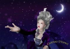 Rococo Celeste AD (Sofia ~Chateau D'Esprit~) Tags: chateaudesprit cde rococo baroque 18th century star pins brooches diamond silver celeste night queen magic flute