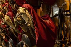 Lipizzaner Stallion Training Facilities Saddles 2 (rschnaible) Tags: vienna austria europe spanish riding school saddles work production entertainment
