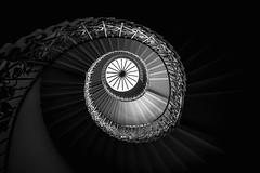 Tulip Eye (Jordi Corbilla Photography) Tags: jordicorbilla jordicorbillaphotography nikon d750 london tulipeye queenvictoriahouse