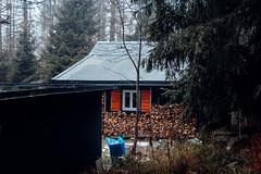 Die Hütte im dunklen dunklen Wald (Gruenewiese86) Tags: 2018 harz hütte november sony a6500 wald forest forestscape fog nebel angst tod tot geheimnisvoll mystisch mystical germany holz baum himmel landstrase