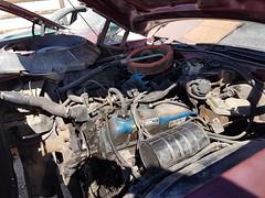 1977 Mercury Cougar engine (dave_7) Tags: 1977 mercury cougar classic car 70s junkyard scrapyard