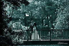 Románticos (Adrit fotografías) Tags: novios fotosnovios boda amor románticos love romantic