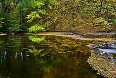River Divoká Orlice (Rostam Novák) Tags: autumn river watter nature time leaves orlice divoká divokáorlice czechrepublic longtime outdoor colours