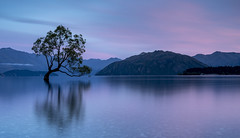 First light (David Feuerhelm) Tags: nikkor landscape dawn morning light serene calm daybreak lake water sky clouds mountains lakewanaka otago southisland newzealand longexposure ndfilter lee nikon d750 2470mmf28 nature